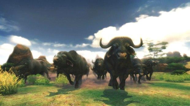 CAA_Buffalo