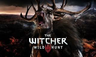 Los monstruos protagonizan el nuevo diario de desarrollo de The Witcher 3