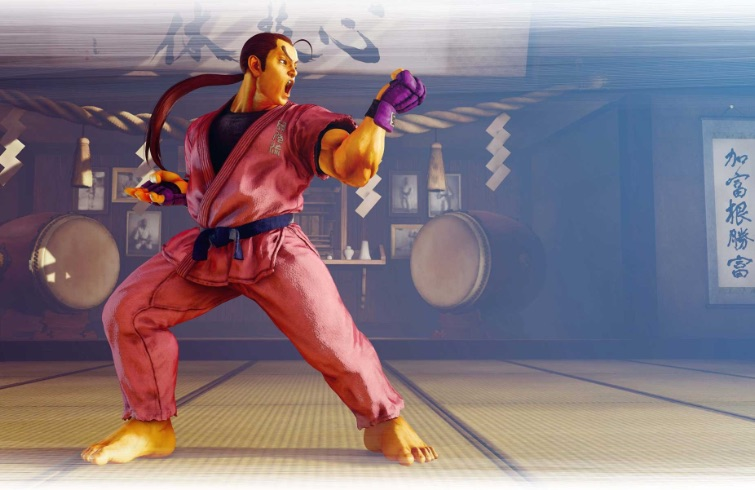 Street Fighter V - Dan