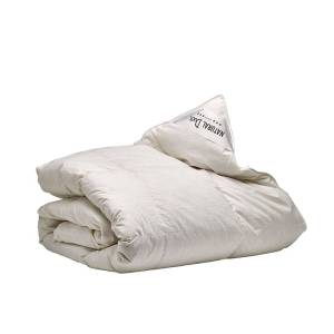 Sleeptime Elegance Satijn Geweven Uni - Goud 1-persoons (140 x 220 cm + 1 kussensloop) Dekbedovertrek