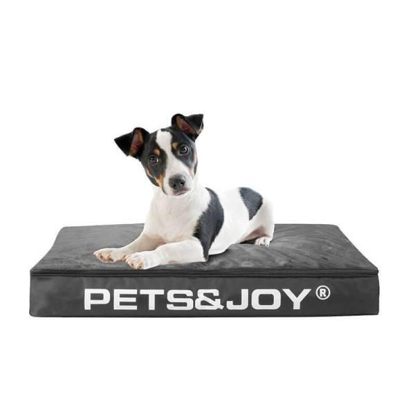 Sit&Joy Zitzak - Hond Kleur: Antraciet