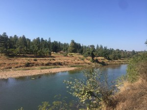 beautiful-road-to-sapatura