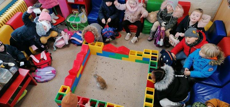 K2A krijgt huisdiertjes op bezoek