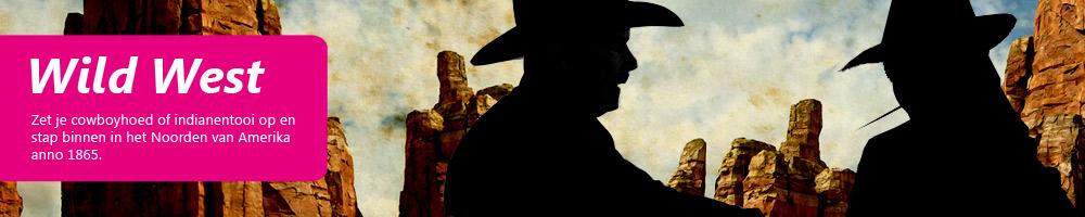 Thema feest Wild West