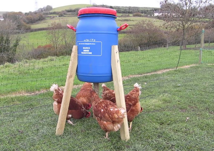 Blue barrel feeders