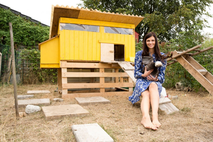 Building A Chicken Coop Plans For Free Diy Ultimate Guide