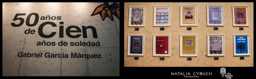 Feria del Libro (4)