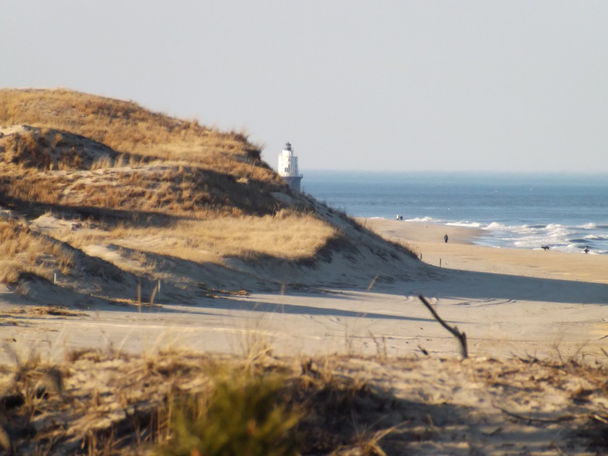 Cape henlopen state park campground is closed delaware for Lewes de fishing report