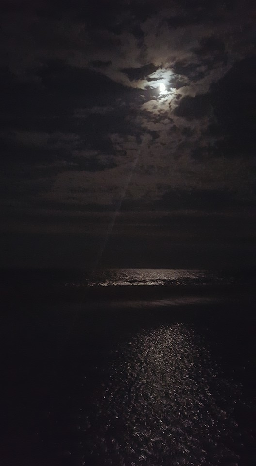 full moon, christmas moon,december, delaware, sussex county, state parks
