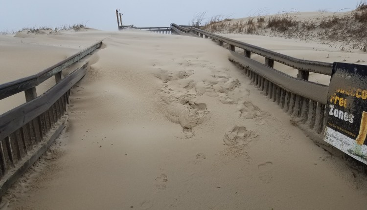 Dune at Fenwick Island State park filled in cross over