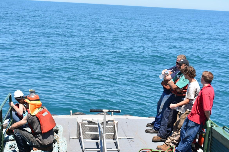 coleen marine, deljerseyland reef, artificial reef programs, mv twin capes