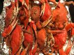 blue crabs,steamed crabs, old bay, jo orange, crabbing, crab pots, delaware, sussex county, maryland crabs,