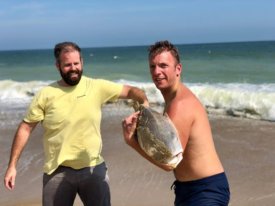 bethany beach, bull red drum, delaware, sussex county, surf fishing, red drum, cut bait