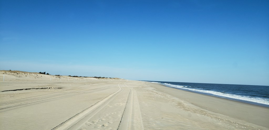 conquest beach, delaware seashore state park, drive on beach, delaware surf fishing, OSV beaches