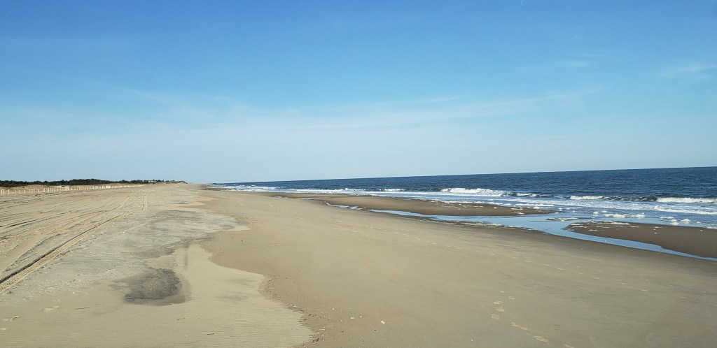 gordons pond, cape henlopen state park, delaware surf fishing,