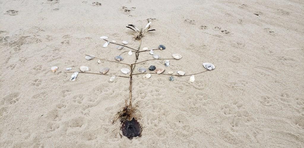 Christmas tree design in sand, delaware beaches, delaware seashore state park, sussex county, dewey beach, sand art, delaware surf fishing