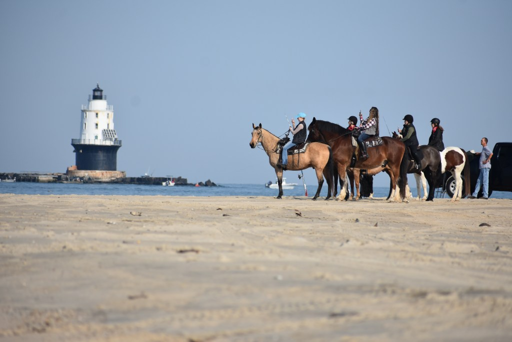 delaware state parks, horseback riding, cape henlopen state park, riding horses on the beach, delaware surf fishing, Harbor of refuge lighthouse