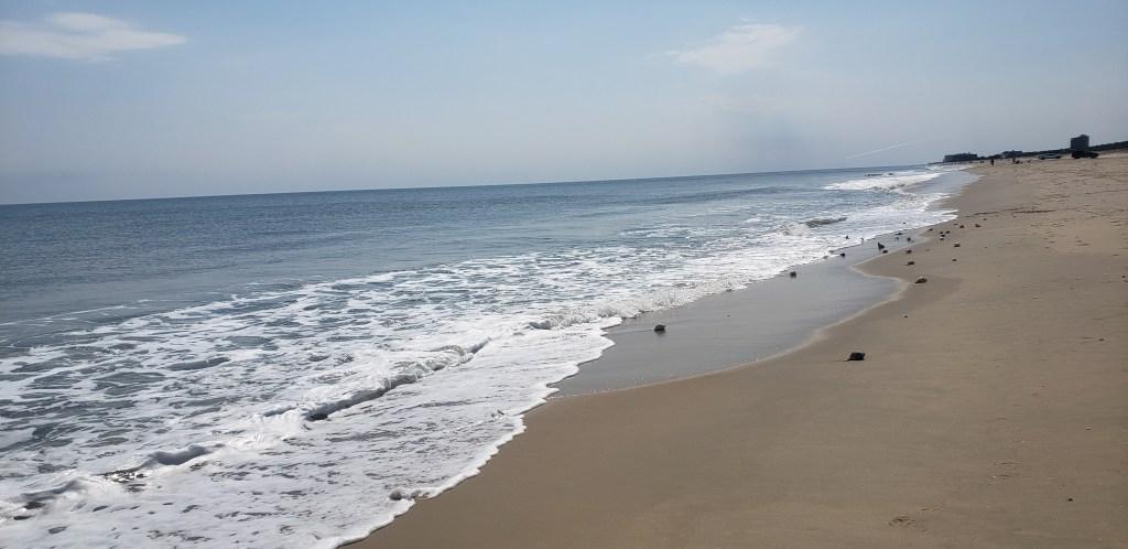 w impact beach combing