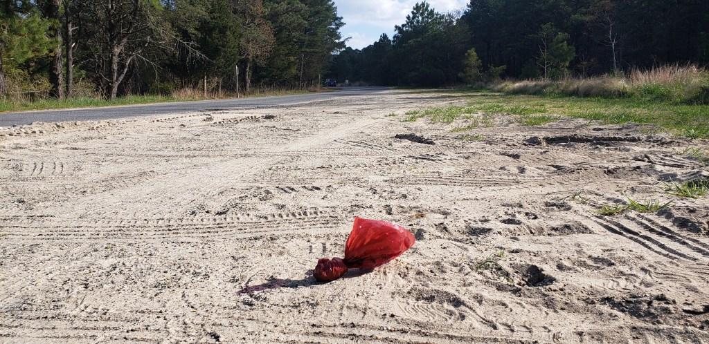 dog poop bag pollution, litter, delaware state parks, Delaware surf fishing,