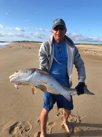 red drum, bull reds, delaware seashore state park, delaware surf fishing,