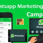 How To Create A WhatsApp Marketing Campaign?