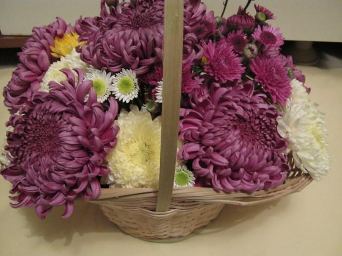 crizanteme-mov
