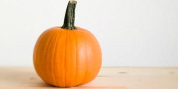sugar-pumpkin
