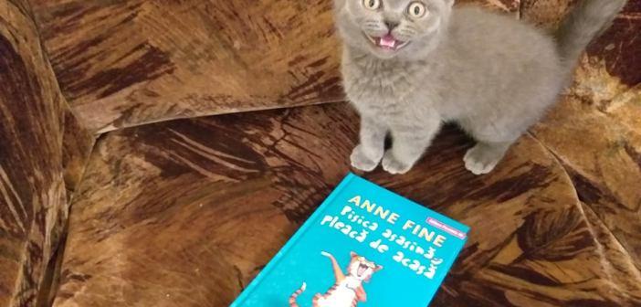 Pisica asasină pleacă de acasă – seria Pisica asasină de Anne Fine, Editura Paralela 45 – recenzie