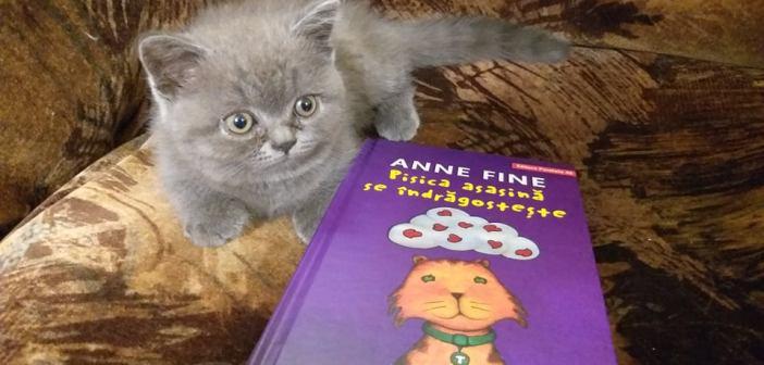 Pisica asasină se îndrăgostește – seria Pisica asasină de Anne Fine, Editura Paralela 45 – recenzie