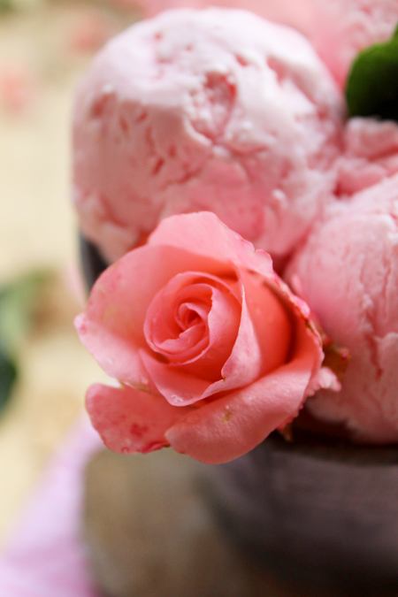 glace-rose3