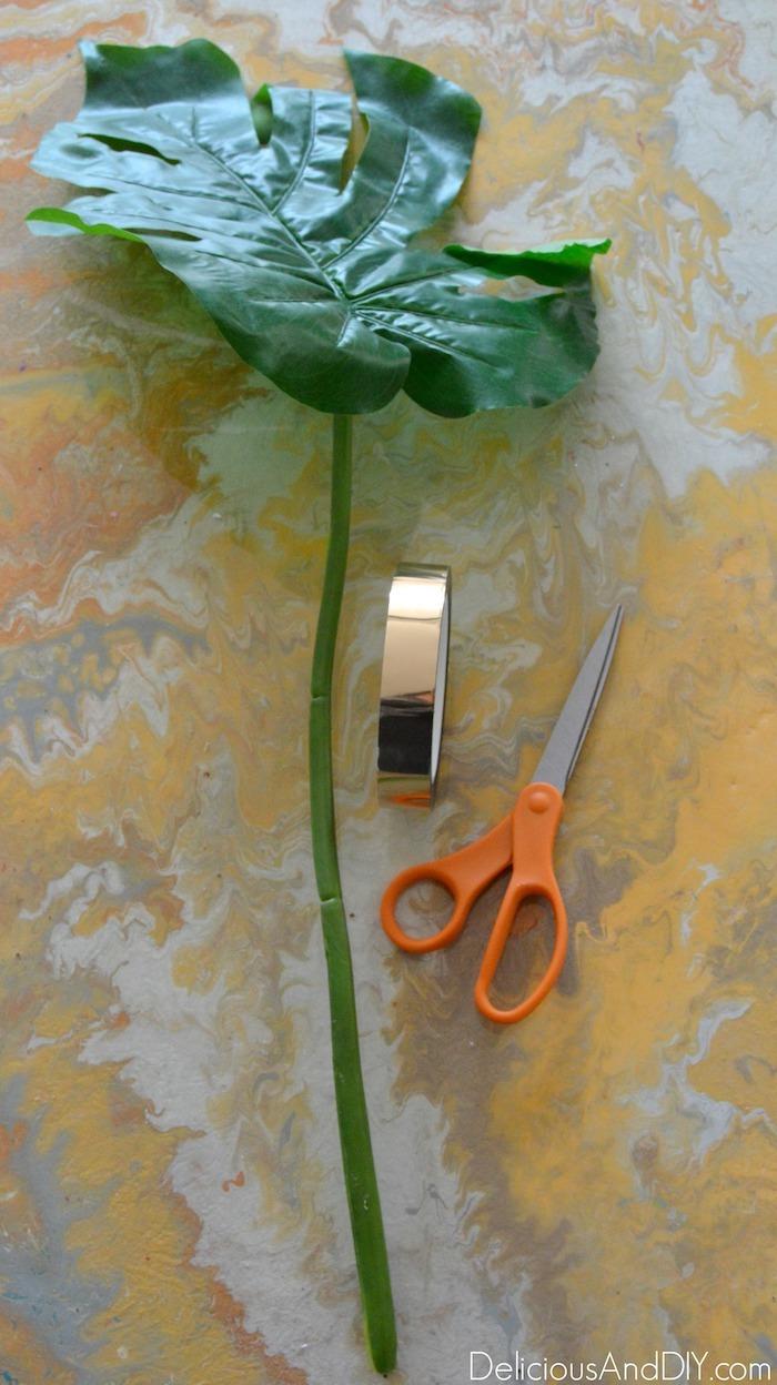 monsterra leaf and scissors