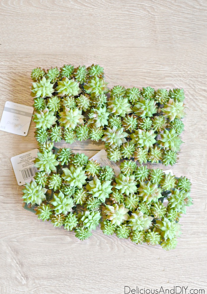 Faux Green Succulents