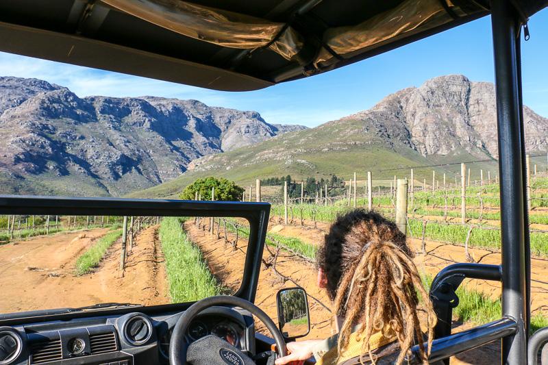 Waterford Estate, Stellenbosch, Süadafrika, Weintourismus, Stellenbosch Wine Route