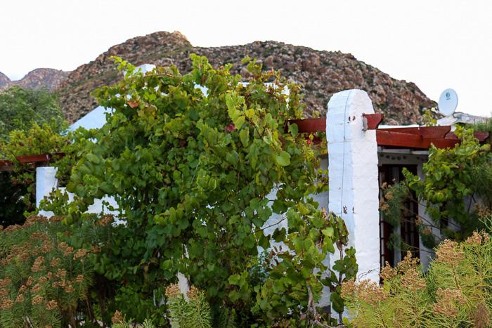 suedafrika roadtrip, montagu
