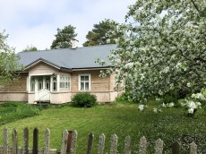 Frühling im Nationalpark Laheema, Estland