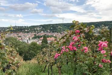 Karlshöhe in Stuttgart – mit Blick auf den Fernsehturm