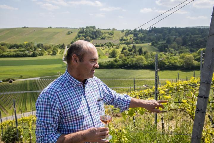 Weingärtner Frank Walz erklärt, welche Arbeiten im Weinberg anstehen