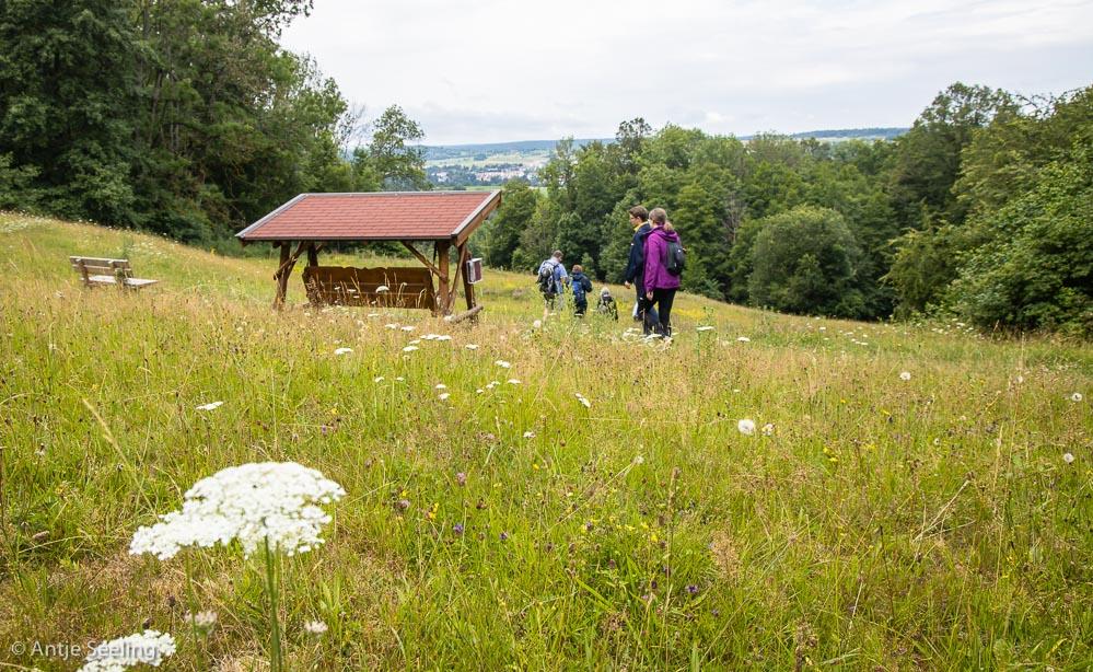 Waldschaukel am Herzog-Jäger-Pfad, Waldenbuch