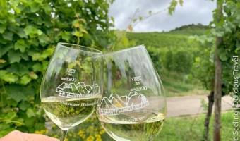 Wein von der Metzinger Hofsteige