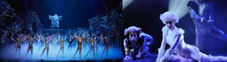 Comedie musicale Cats, Théâtre Mogador, Paris