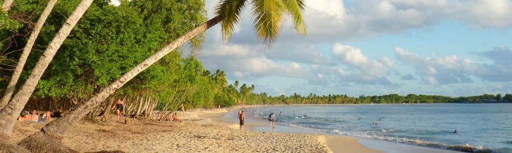 Comité Martiniquais du Tourisme, nomination
