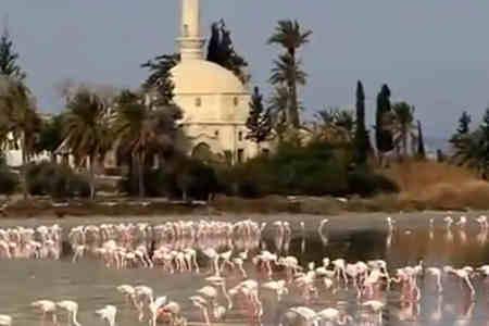 visiter l'île de Chypre, conseils