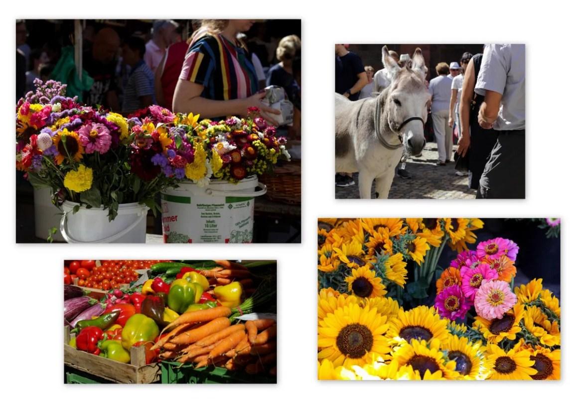De wekelijkse markt van Freiburg