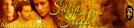 mlSatin-and-Steel_banner