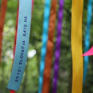 True Colours0101