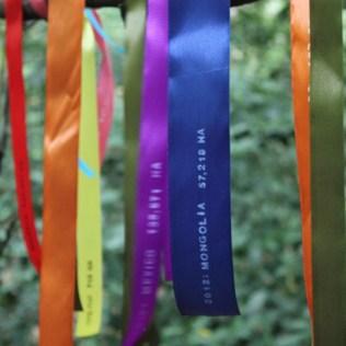 True Colours0108