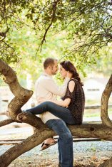 lovebirds in a tree