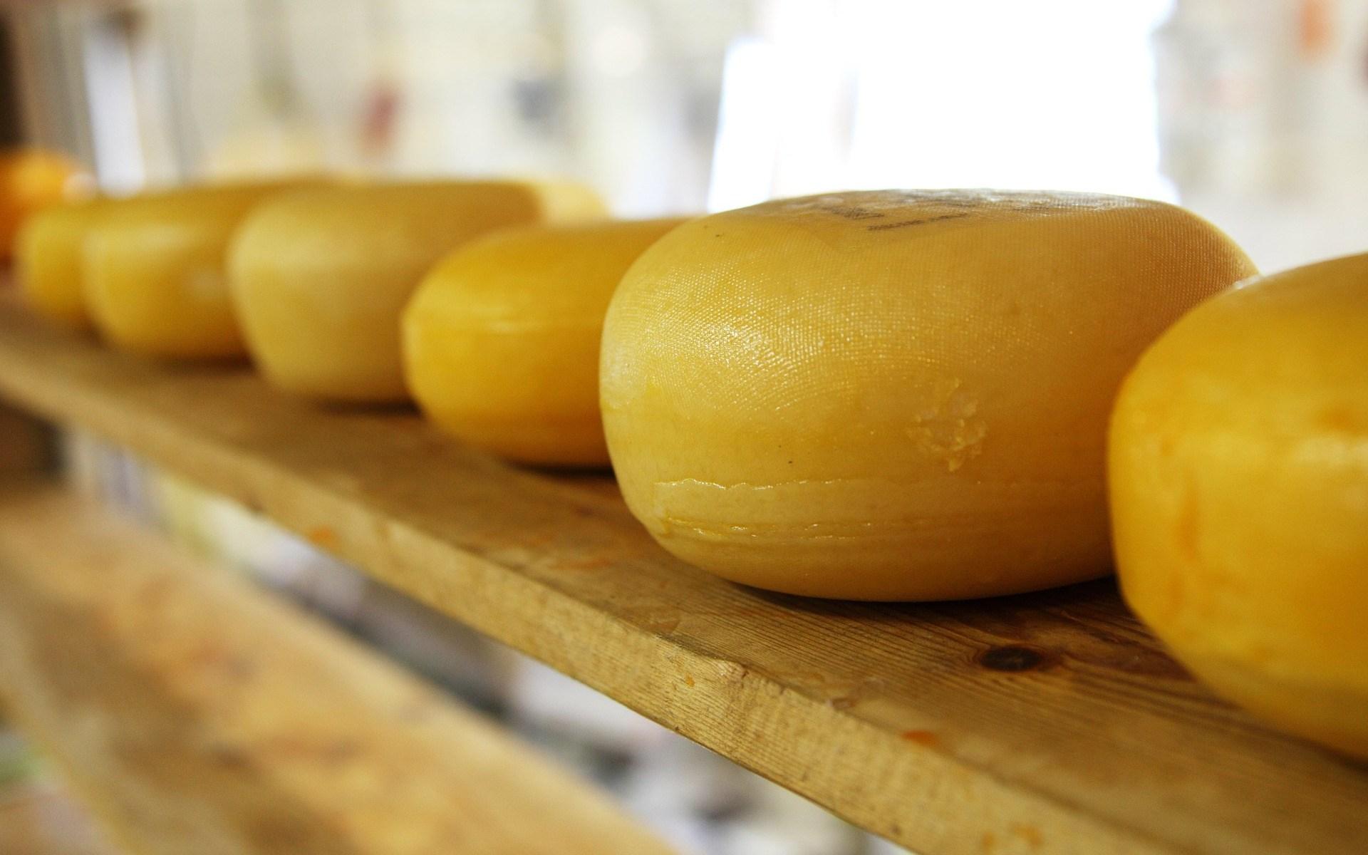 fromage et gastronomie hollandaise