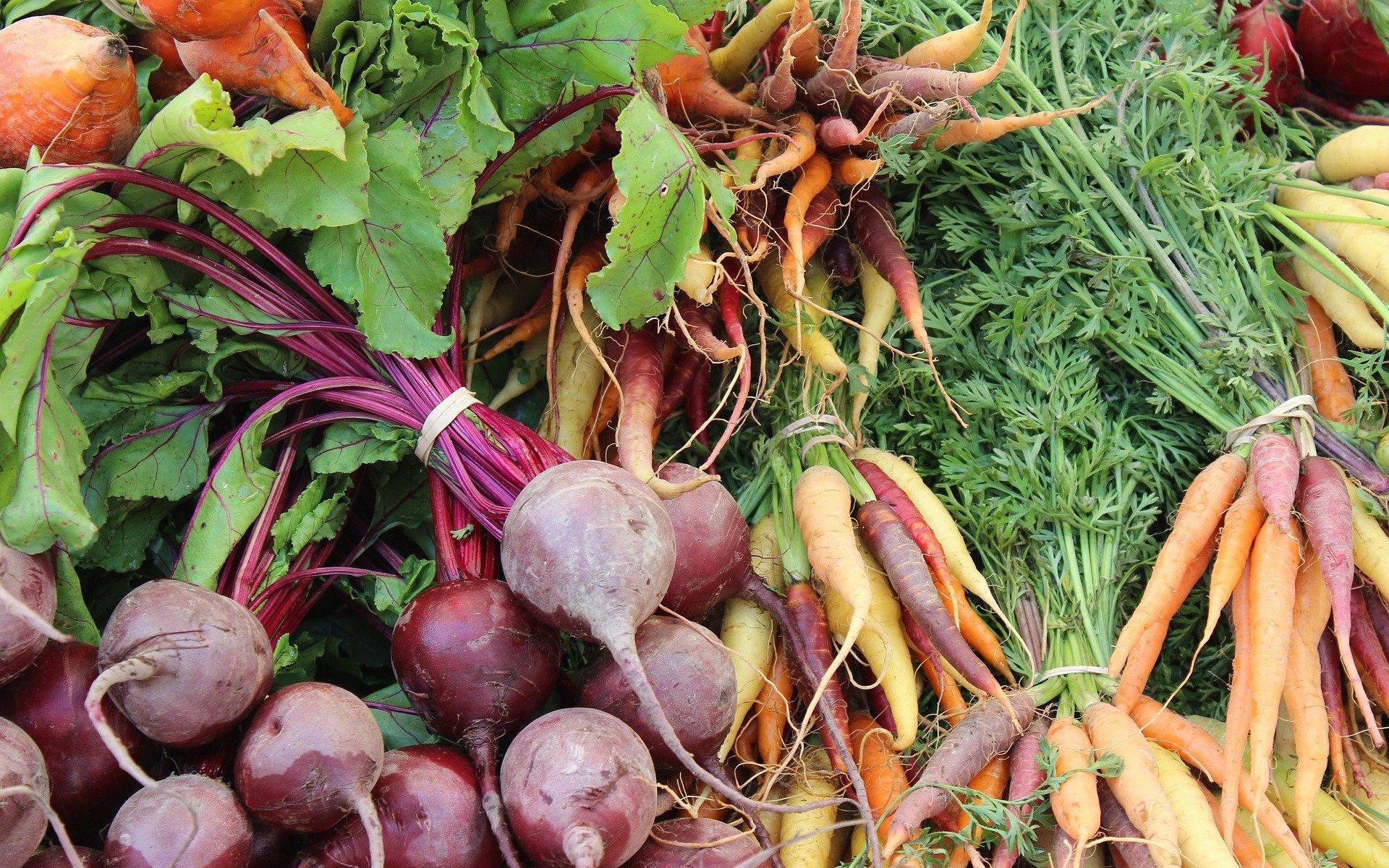comment cuisiner les fanes de légumes