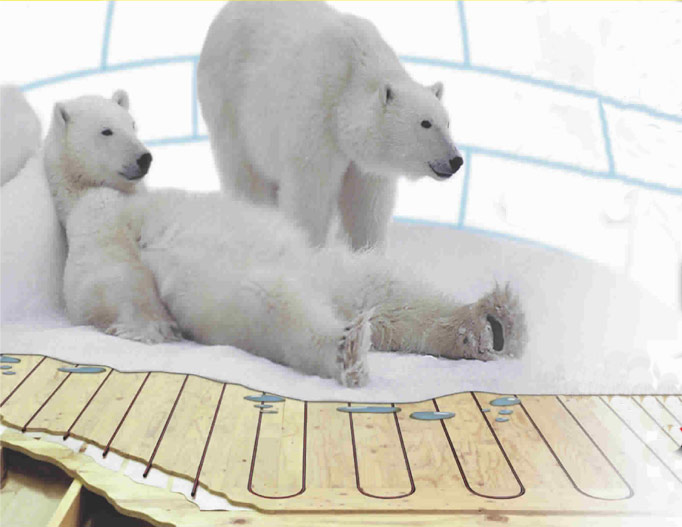 Polar bears in an igloo with heated floors - Plumbing, heating, air-conditioning, HVAC